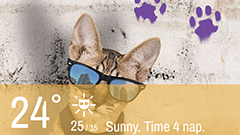 Weather Whiskers App & Widget