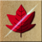 【オクトバセレクト】いよいよシーズン到来!スポット情報からゲームまで、紅葉を120%楽しむためのアプリ4選!