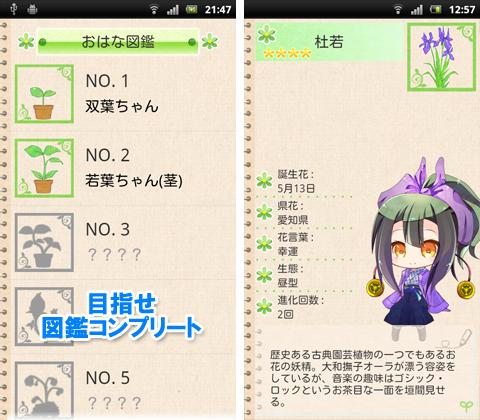 jp.shimnn.android.flowergirl-3