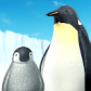 penguin_rooty_pict.livewallpaper-icon