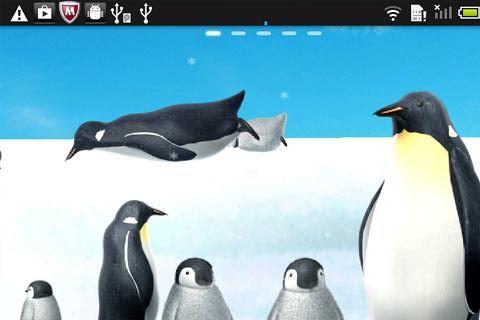 penguin_rooty_pict.livewallpaper1