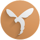 com.spiderfly.stormfly11.icon