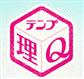 tempq.icon
