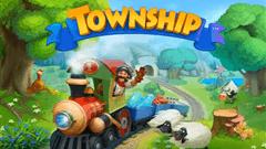 タウンシップ (Township)