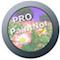 PaintNote Pro